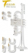 Arnolds & Sons Terra Intermediate Series Eb/DTrumpet ATR4600GS